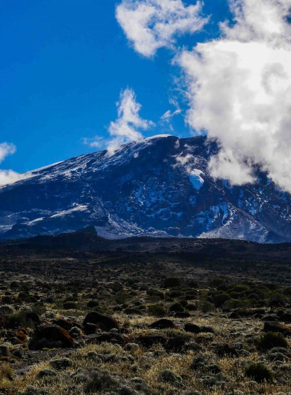 Ascent to the roof of Africa: The Kilimanjaro